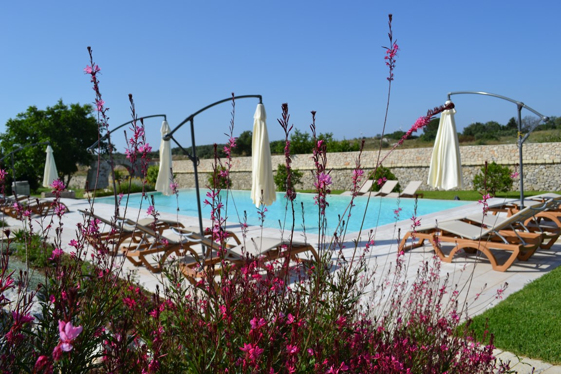 Foto Piscina in Masseria